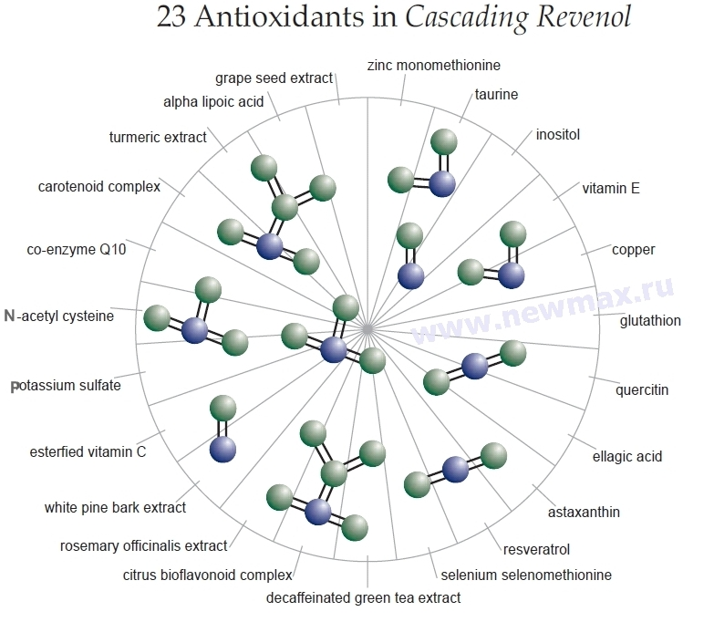 23 Antioxidants in Cascading Revenol