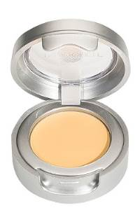 TrueTouch_Perfecting_Concealer_Light_9380